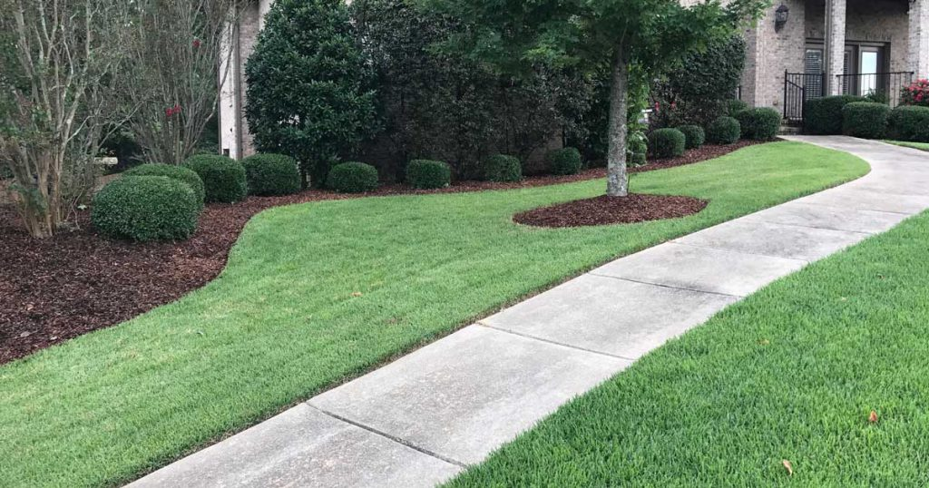 mulch in nice yard