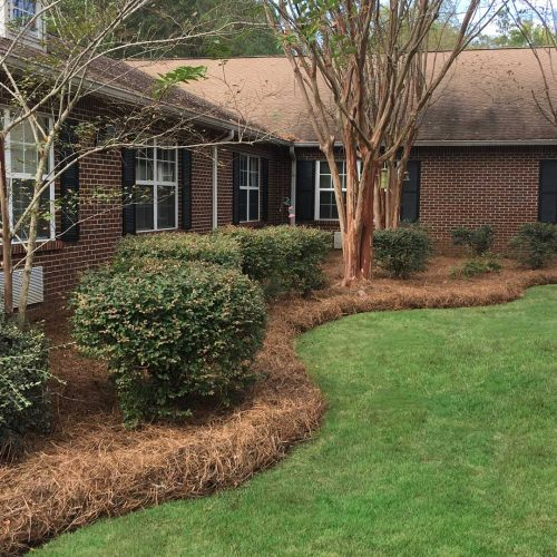 Lawn Maintenance in Helena, AL