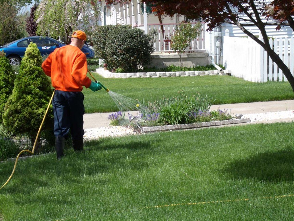 Lawn fertilization in Pelham, AL