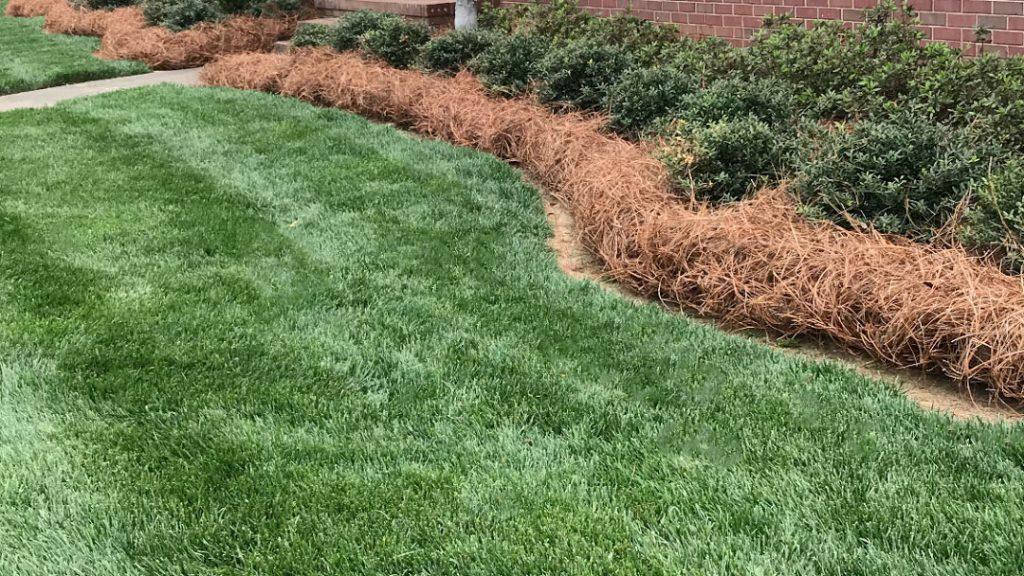 pinestraw installation in Hoover, AL