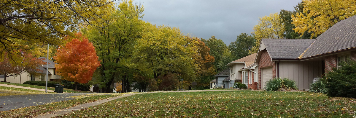 fall_lawn_and_leaf_clean-up_care